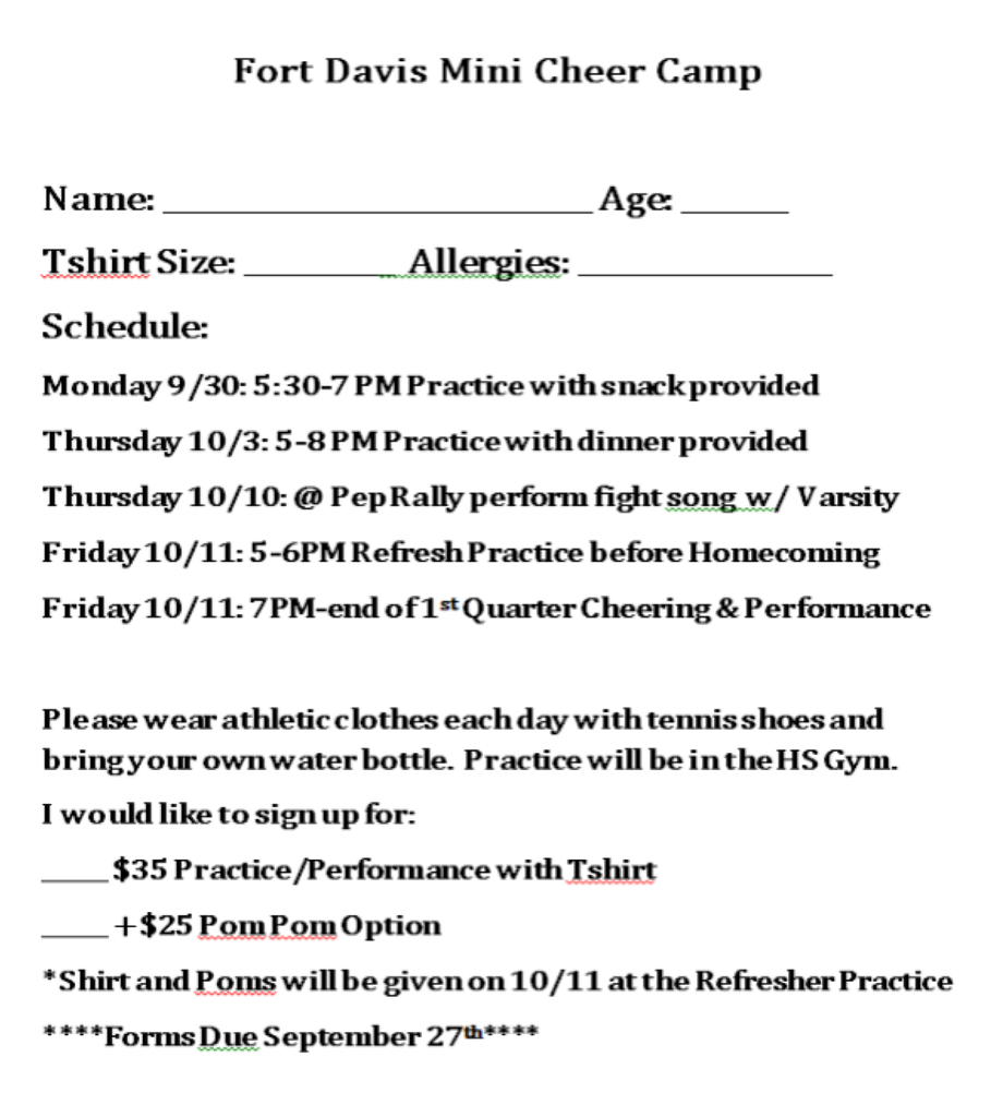 Mini Cheer Camp 2
